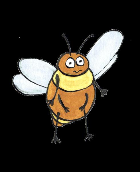 Insecte volant